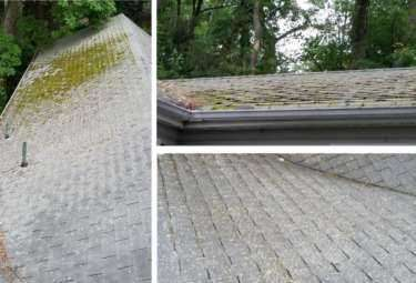 Mildew or Mold on your Roof? It's Time to Wash!